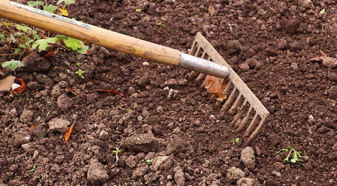 Αιτήσεις στο δήμο Νεάπολης-Συκεών για τους λαχανόκηπους