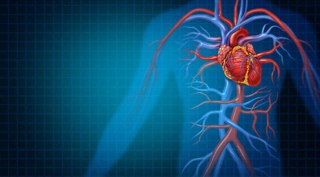 τεχνητή νοημοσύνη καρδιά