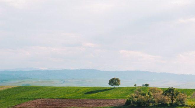 Ποιοι μπορούν να λάβουν δωρεάν στρέμματα γης για καλλιέργεια