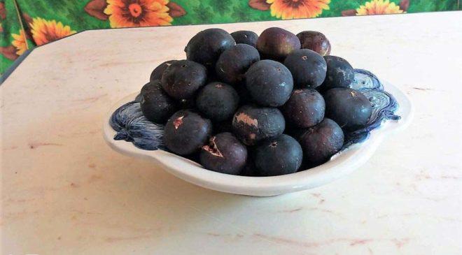 Σύκα: 12 πράγματα που θέλετε να μάθετε για το απόλυτο καλοκαιρινό φρούτο!
