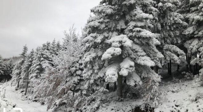 Live εικόνα από τα σημεία που χιονίζει