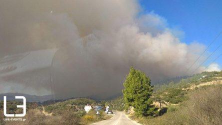 36 πυρκαγιές το τελευταίο 24ωρο σε όλη την Ελλάδα