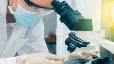 Ο ΠΟΥ διεξάγει έρευνα στην Κίνα για την προέλευση του κορονοϊού