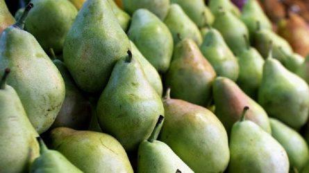 Αχλάδι, το φρούτο με τα πολλά οφέλη για την υγεία μας