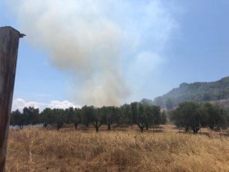 Σιθωνία: Ξέσπασαν δύο πυρκαγιές σε λίγη ώρα