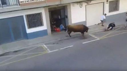 Ταύρος σκότωσε άνδρα στη διάρκεια φεστιβάλ στην Ισπανία (ΒΙΝΤΕΟ)