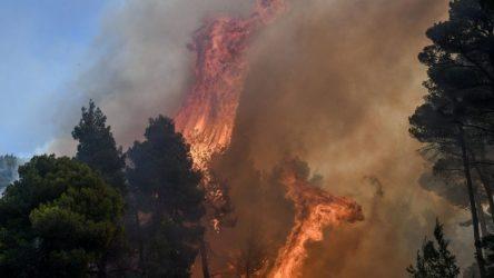 Φωτιά στην Εύβοια: Συγκρατημένη αισιοδοξία, κρίσιμες οι επόμενες ώρες
