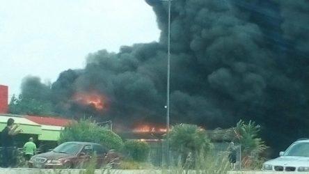 Μάχη με την πυρκαγιά και στην Εύβοια – Υπό έλεγχο η φωτιά στη Ρόδο