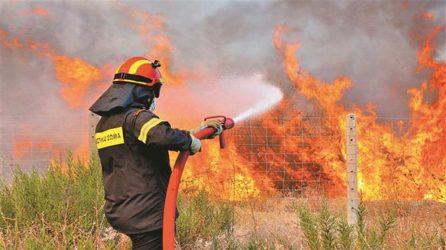 Πυρκαγιά και στα Καλάβρυτα, μεγάλη κινητοποίηση της Πυροσβεστικής