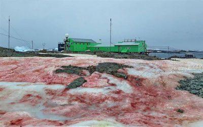Κόκκινος ο πάγος στην Ανταρκτική! (ΦΩΤΟ)