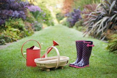 Απρίλιος: Οι εργασίες που κάνουμε στον κήπο