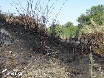 Εσβησε η φωτιά στη Χαλκιδική