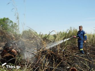 47 πυρκαγιές σε 24 ώρες σε όλη την Ελλάδα