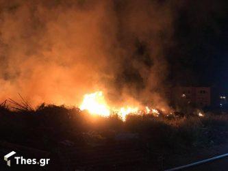 Εβρος: Εξαπλώθηκε στο δάσος της Δαδιάς η μεγάλη φωτιά