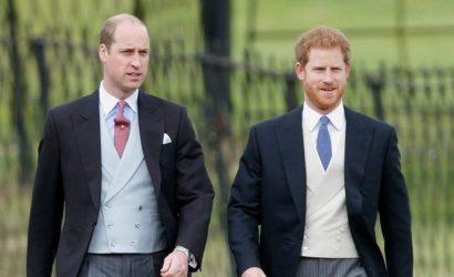 Επανασύνδεση για τα αδέρφια Χάρι και Ουίλιαμ