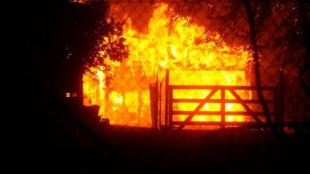 Καλιφόρνια: Το πύρινο μέτωπο εκτείνεται σε 530.000 στρέμματα
