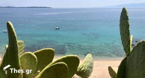 Η «ξανθιά» παραλία στη Χαλκιδική που αξίζει να ανακαλύψετε (ΒΙΝΤΕΟ)