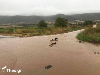 """Λέκκας για κακοκαιρία """"Μπάλλος"""": """"Χθες έπεσαν 30 εκατομμύρια τόνοι νερού στον Κηφισό – Ξεχνάμε ό,τι ξέραμε"""""""