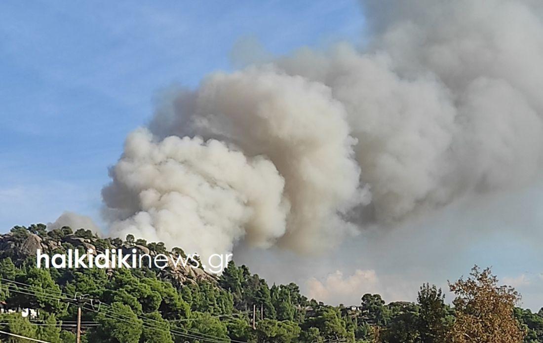πυρκαγιά Χαλκιδική