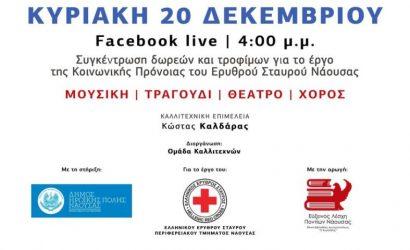 Νάουσα: Διαδικτυακή συναυλία για τη στήριξη του έργου του Ερυθρού Σταυρού