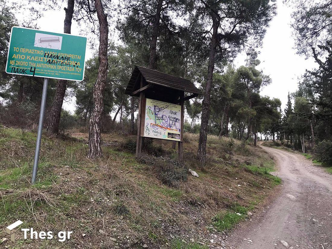 δάσος Σέιχ Σου Θεσσαλονίκη Συκιές δάσος