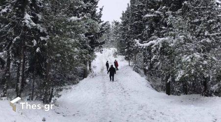 Σέιχ Σου χιόνια