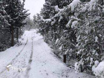 Ελληνική Ομάδα Διάσωσης: Μεγάλος ο κίνδυνος από τις χιονοστιβάδες