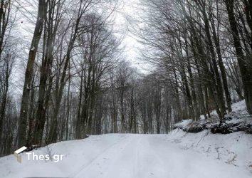 Παγγαίο Ορος κορυφή Παγγαίου χιόνι τοπίο χιονισμένο τοπίο