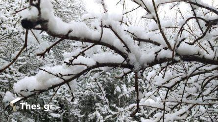 Θεσσαλονίκη χιόνι πόλη Φλώρινα