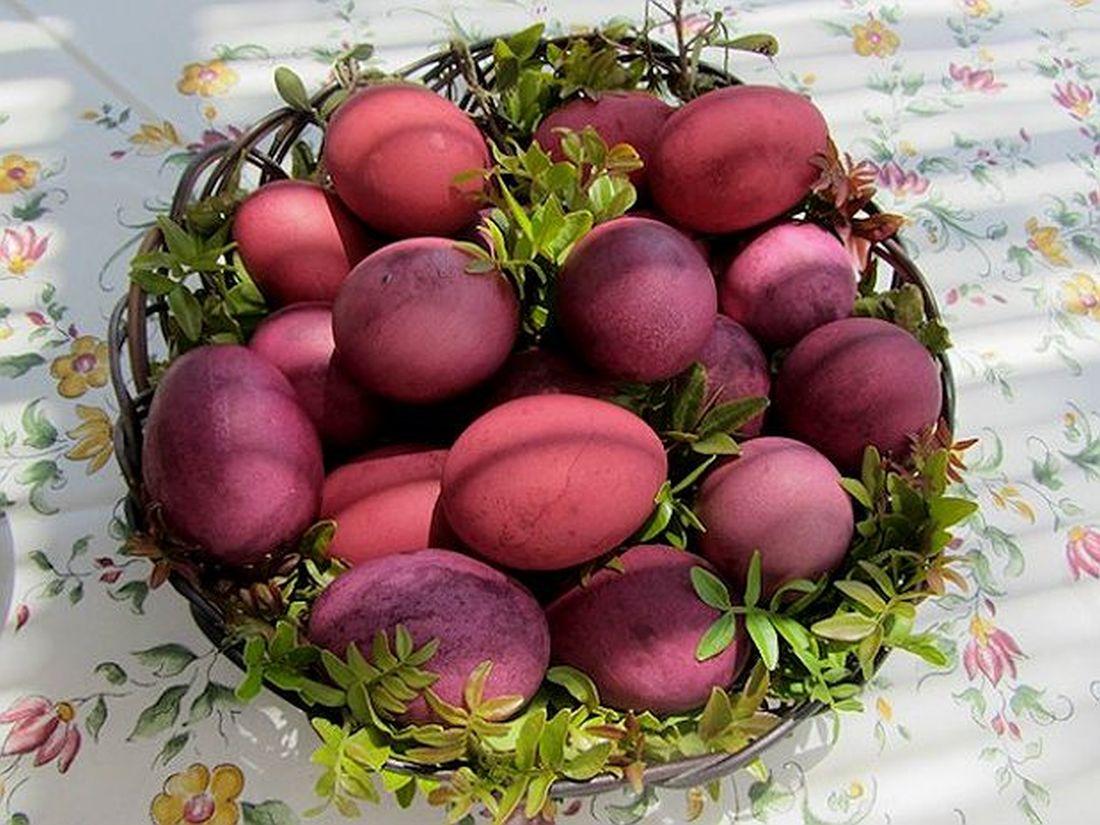 ριζάρι φυτό βότανο βαφή ρίζα αυγά