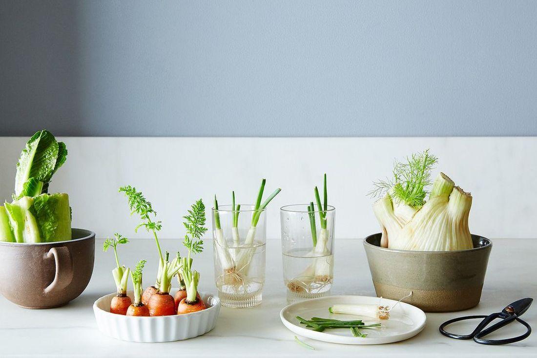 Καλλιεργήστε λαχανικά μετά από σαλάτα σε νερό