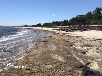Χαλκιδική: Πήγαν για μπάνιο αλλά η θάλασσα… έλειπε – Επιμένει η άμπωτη (ΒΙΝΤΕΟ & ΦΩΤΟ)