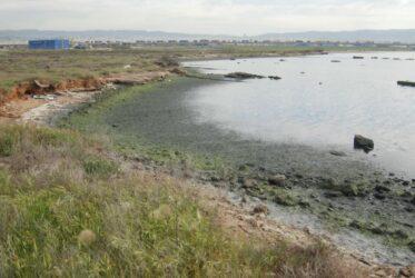 """""""Εικόνα υποβάθμισης στην ακτή του Καλοχωρίου στο Θερμαϊκό Κόλπο λόγω ρύπανσης"""""""