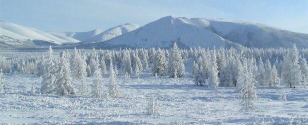 """Σιβηρία: O καιρός """"τρελάθηκε"""" – Θερμοκρασίες επιφάνειας εδάφους από 35 έως 48 βαθμούς Κελσίου"""
