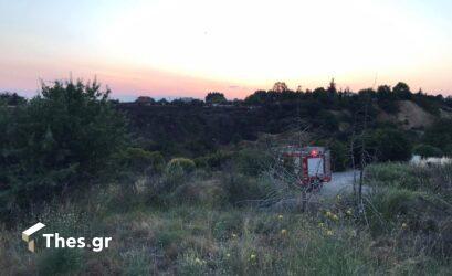 Φωτιά από την Αλβανία πέρασε τα σύνορα στη Θεσπρωτία