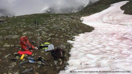 """Αλπεις: Το χιόνι """"βάφτηκε"""" κόκκινο (ΦΩΤΟ)"""