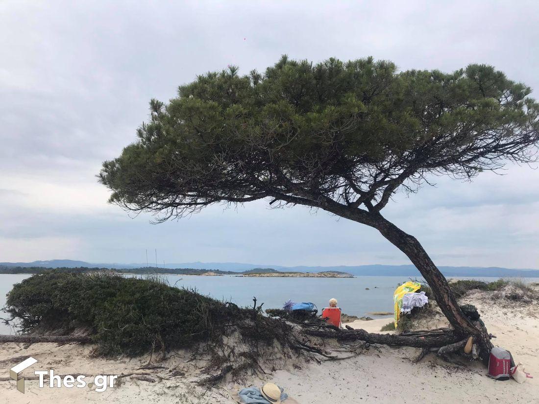 Παραλία Καρύδι Βουρβουρού Χαλκιδική