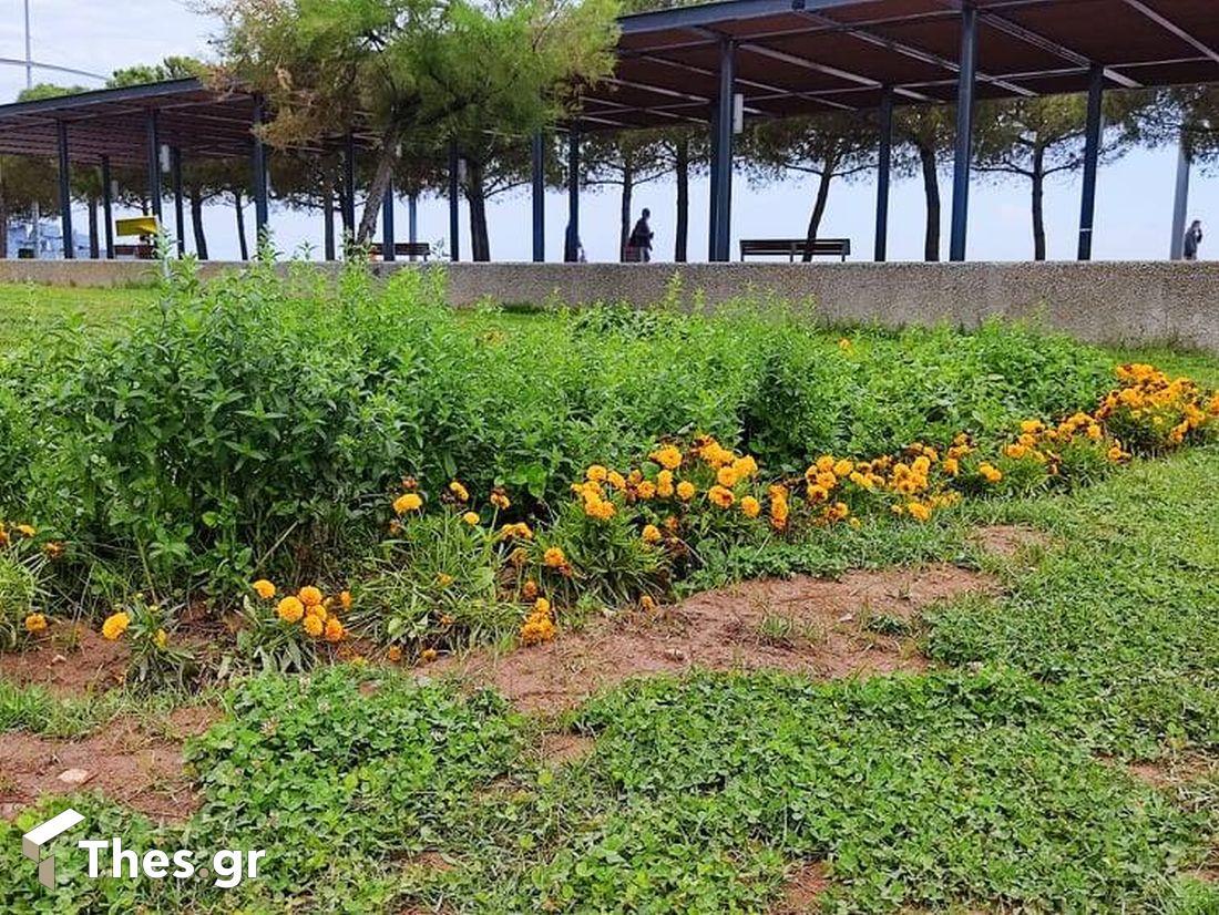 Ο κήπος του νερού στη Νέα Παραλία Θεσσαλονίκη