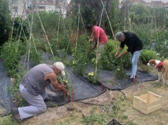 πρώην υπουργός καλλιεργεί λαχανικά για τα Παιδικά Χωριά SOS στο Πλαγιάρι
