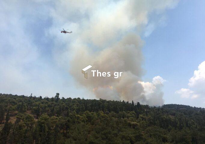 Πολύ υψηλός κίνδυνος πυρκαγιάς αύριο (4/8) σε Θεσσαλονίκη και Χαλκιδική