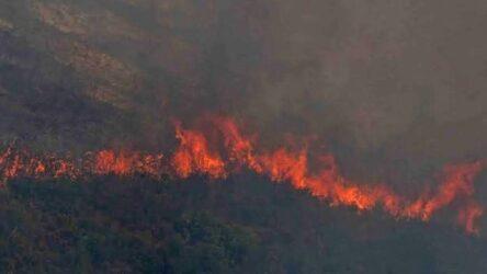 Ολονύκτια μάχη με τις φλόγες στη Βαρυμπόμπη – Στο σημείο ο Μητσοτάκης