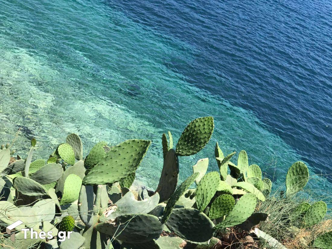 Σκιάθος σποράδες νησί διακοπές