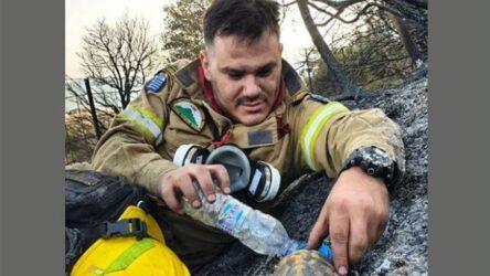 Αχαΐα: Viral ο πυροσβέστης που μετά τη φωτιά έδωσε νερό σε χελώνα (ΦΩΤΟ)