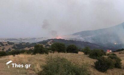 Συναγερμός στην Πυροσβεστική: Ξέσπασε φωτιά στην Πάρνηθα