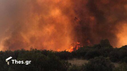 Στις φλόγες όλη η Ευρώπη: Τριπλάσιες πυρκαγιές φέτος, αυξήθηκαν κατά 94% οι καμένες εκτάσεις