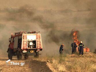 Πολύ υψηλός κίνδυνος πυρκαγιάς αύριο (5/8) σε Θεσσαλονίκη και Χαλκιδική