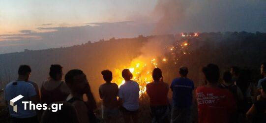 Λέκκας: Γιατί δεν έσβηναν οι φωτιές παρότι δεν είχε ανέμους
