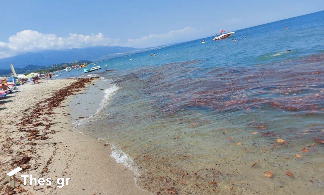 παραλία Πόροι