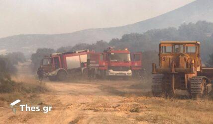 Εύβοια: Οριοθετήθηκε η φωτιά στην Κάρυστο