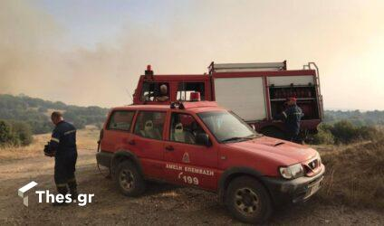 Υψηλός o κίνδυνος πυρκαγιάς αύριο (22/8) στη Θεσσαλονίκη και τη Χαλκιδική (ΧΑΡΤΗΣ)